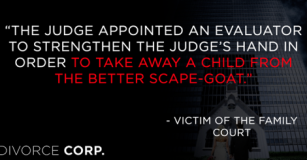 Judge used psychologist as scape-goat - Stand up for Zoraya - 2015