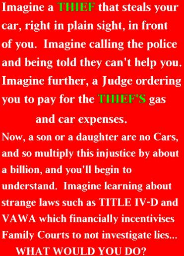 VAWA Injustice - 2015